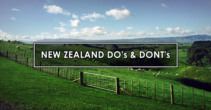new zealand dos and donts