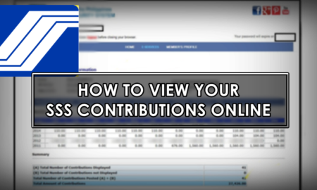 how to view sss contributions online