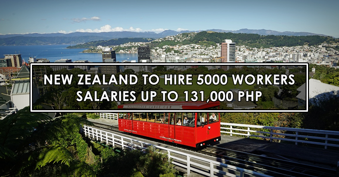 new zealand skilled workers job hiring