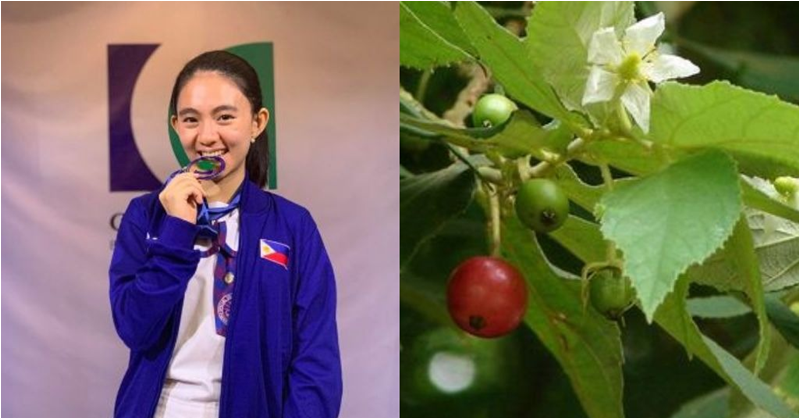 Young Filipino Student Discovers Potential Cure for Diabetes