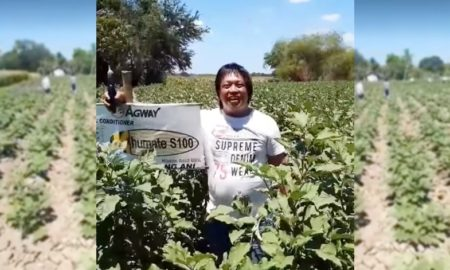 VIDEO Farmer Gives Away Vegetable Harvest to Neighbours in Need