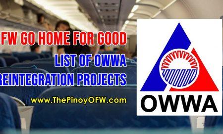 list of owwa reintegration program for ofws