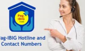 pag-ibig hotline